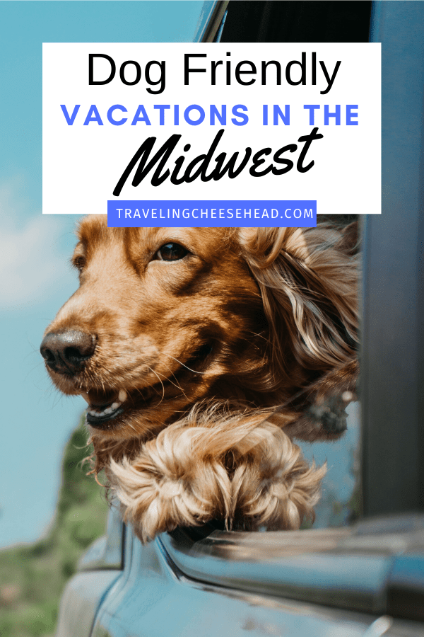 Dog Friendly Vacations in the Midwest cover photo