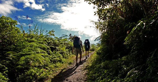 Join a trekking tour
