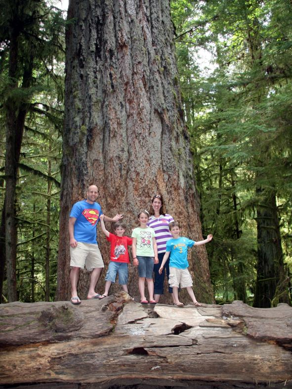 Cathedral Grove images, Cathedral Grove, Vancouver Island Old Growth