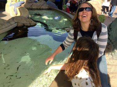 Seaworld, San Diego Seaworld, Dolphin Show, California