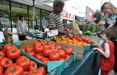 Duncan Farmers Market, Traveling Islanders, Duncan Market, Duncan outdoor market, Downtown Duncan, Vancouver Island Travel Guide, Vancouver Island Travel Blog, Traveling Islanders