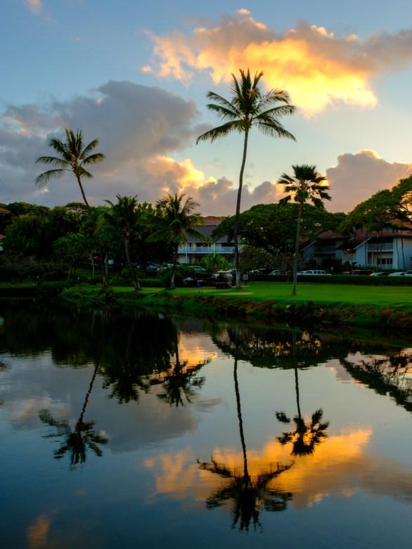 Kauai Mornings