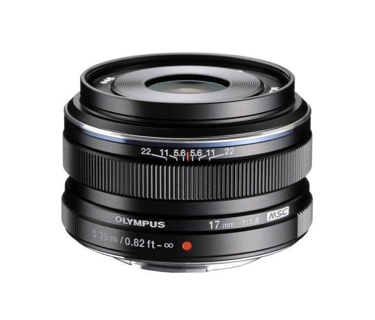 Olympus 17mm Lens | Amazing Travel Photography Gear | TravelingPetiteGirl.com