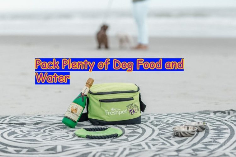 Pack Plenty of Dog Food and Water