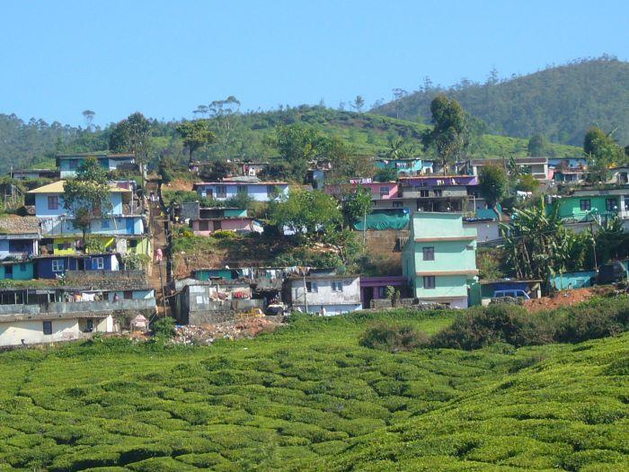 teeplantage-häuser