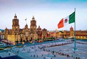Mexico's Frequent Traveler Program For Pets