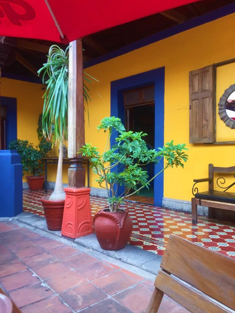 pet friendly restaurant la taqueria Xela