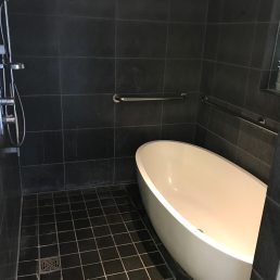 Shower with tub and separated toilet