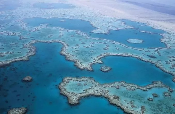 Great Barrier Reef Coral Australia e1553707689411 - 9 Most Beautiful Places to Visit Before You Die!