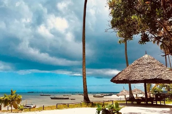 Mafia Island - 7 Best Places to Visit in Tanzania