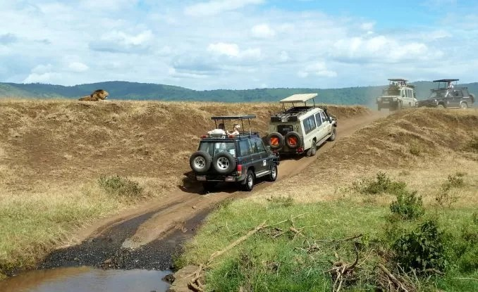 Safari Wildlife Watching e1563081277654 - 7 Best Places to Visit in Tanzania