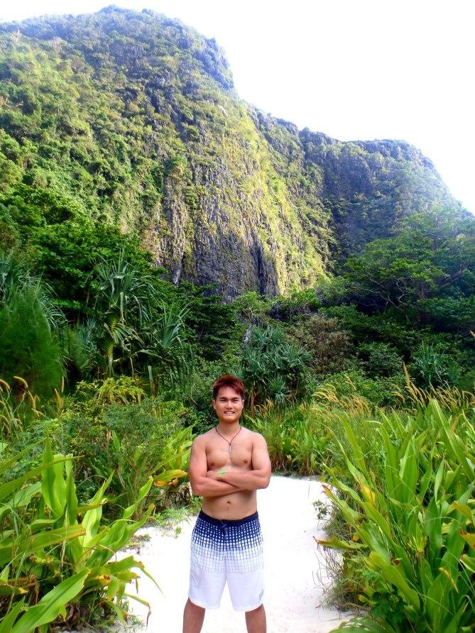 The beautiful limestone mountain and rainforest at Maya Bay