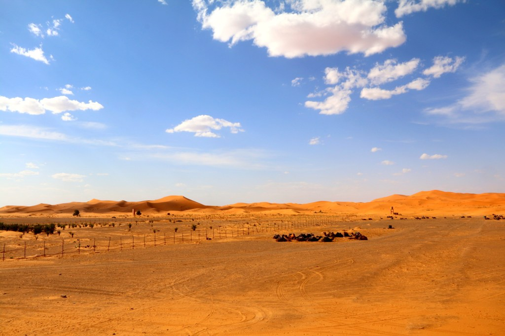 The Great Sahara Desert view from the rooftop area of Hotel Nomad Palace