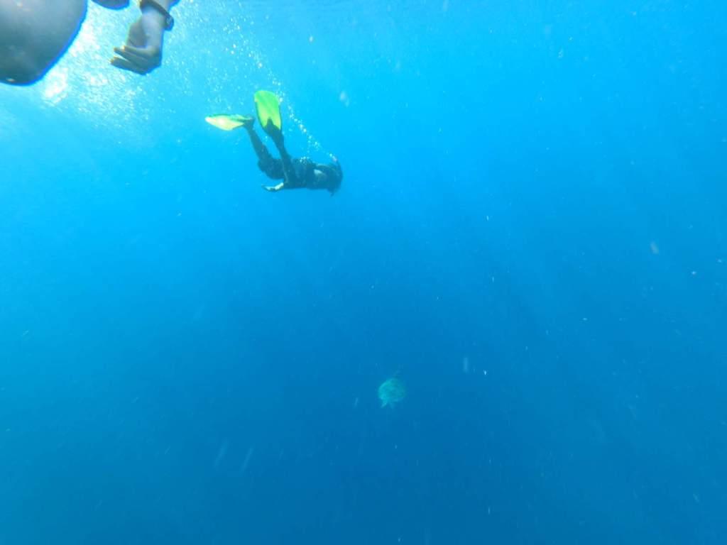 Diving at Gili Air Island