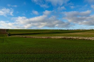 Scottish Border Fields Travel Is Sweet