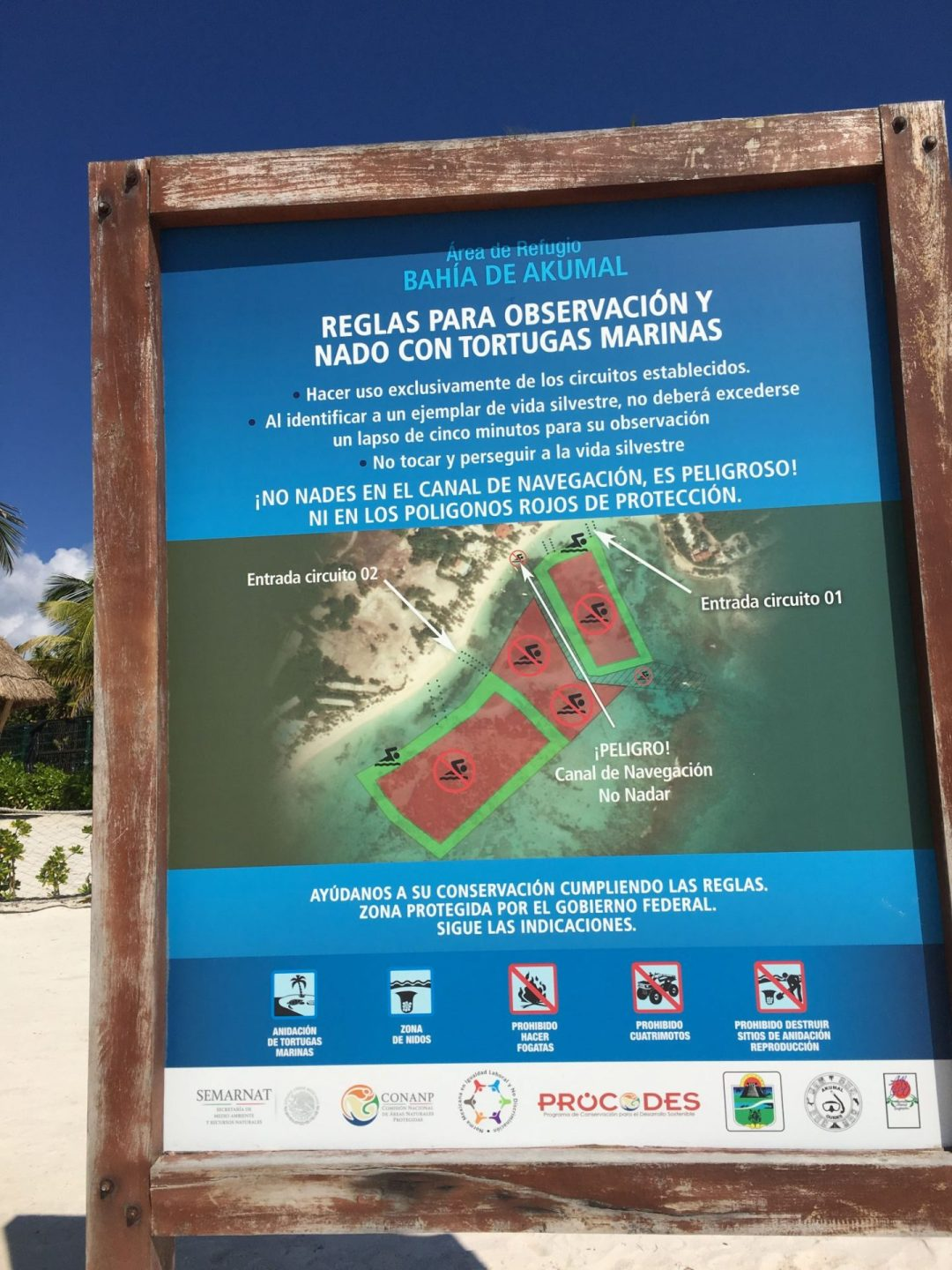 Map indicating where you can snorkel with turtles in Akumal