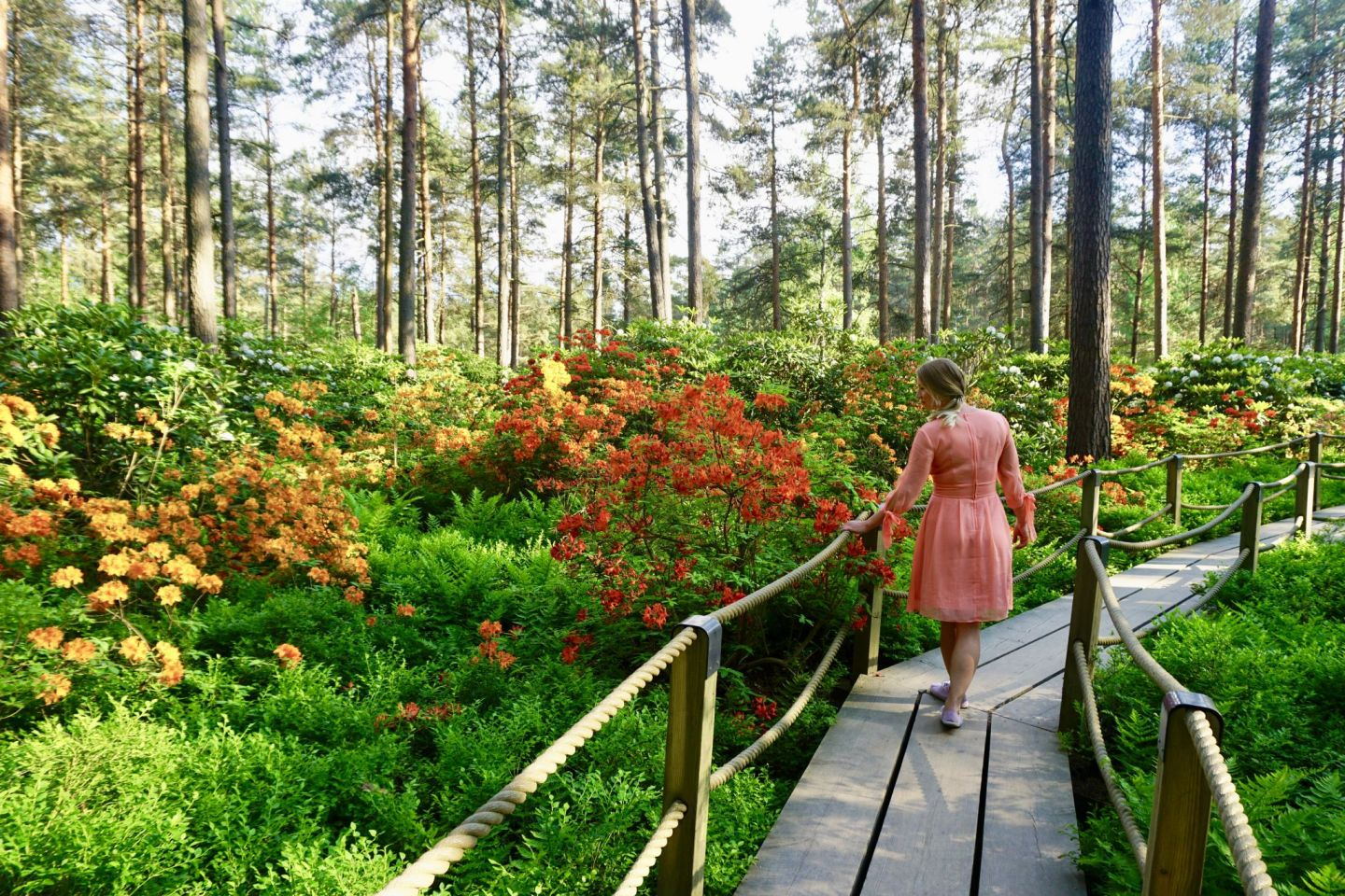 How to visit the Rhododendron Park in Helsinki