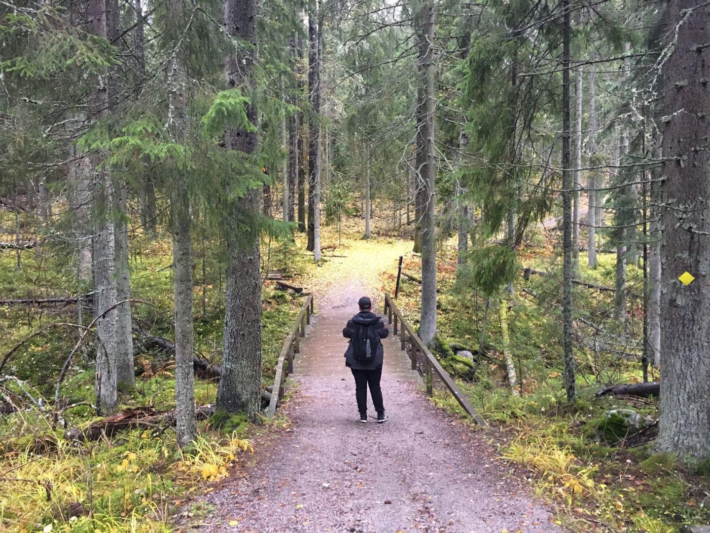 where to hike in Espoo