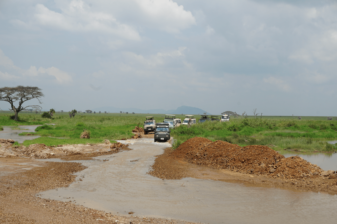 Central Serengeti and jeeps crossing a flooded road.