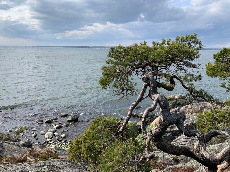 Vetokannas in Porkkala in Kirkkonummi