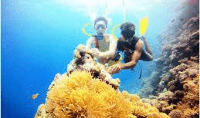Honeymoon in Lakshadweep: Lakshadweep is perfect for romance