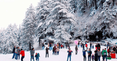 Snow in kufri : tourists increased after fresh snowfall in kufri