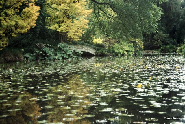 christchurch, hagley park
