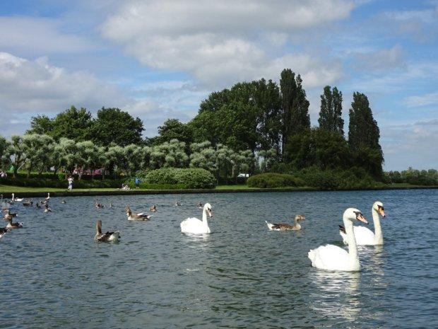 Milton Keynes Celebrates 50 Years - 5 More Reasons to Visit
