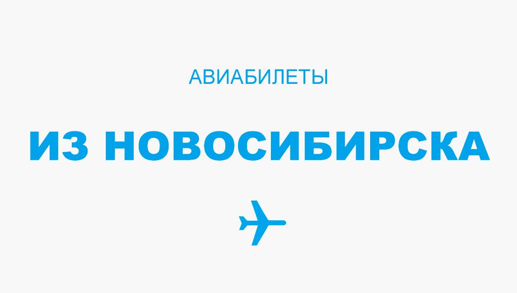 Авиабилеты из Новосибирска - прямые рейсы, расписание, цена
