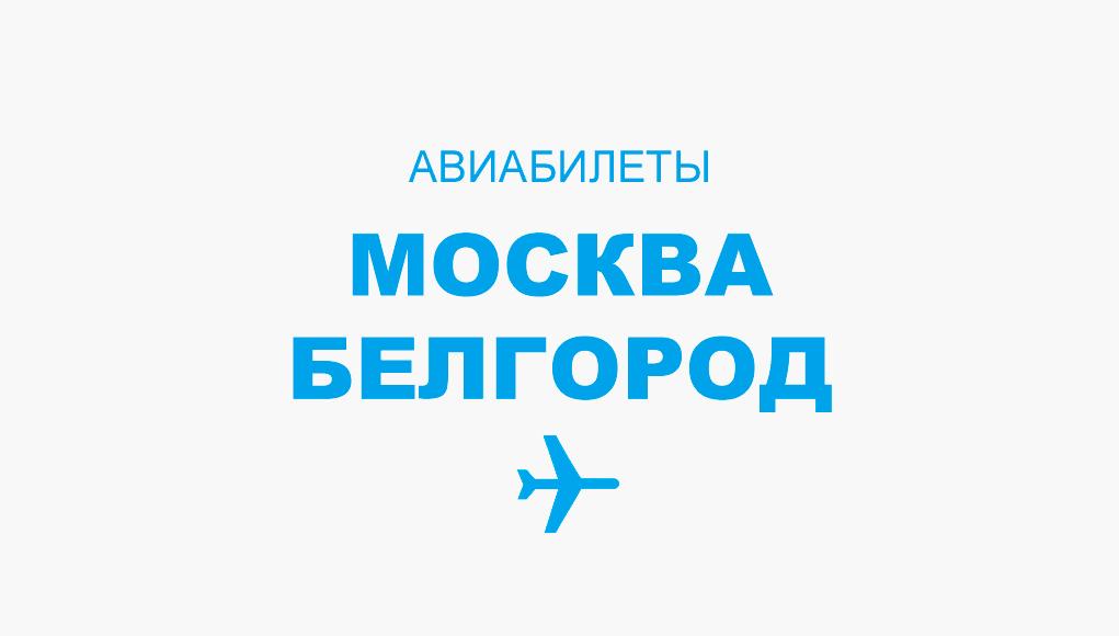 Авиабилеты Москва - Белгород прямой рейс, расписание и цена