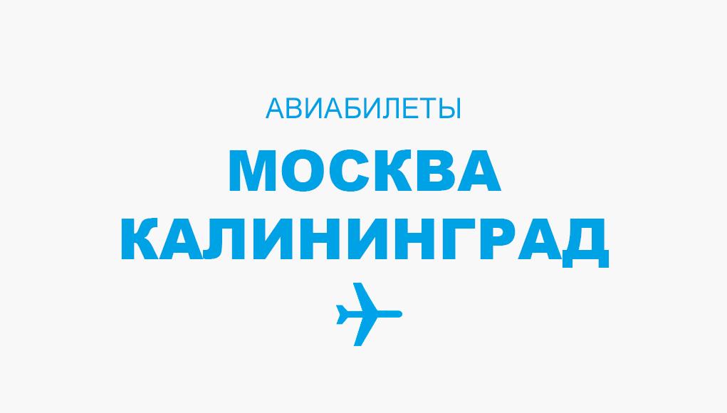 Авиабилеты Москва - Калининград прямой рейс, расписание и цена