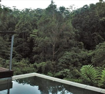 Crystal Creek Rainforest Retreat - Lamington Lodge - Plunge Pool Views. Image - Kate Webster