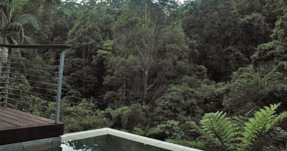 Crystal Creek Rainforest Retreat - Lamington Lodge - Plunge Pool Views. Image - Kate Webster