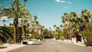 Palm Springs Instagram captions