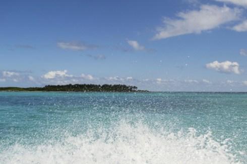Isla Contoy 1