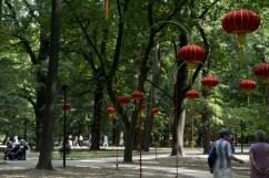 parco Lazienki 4