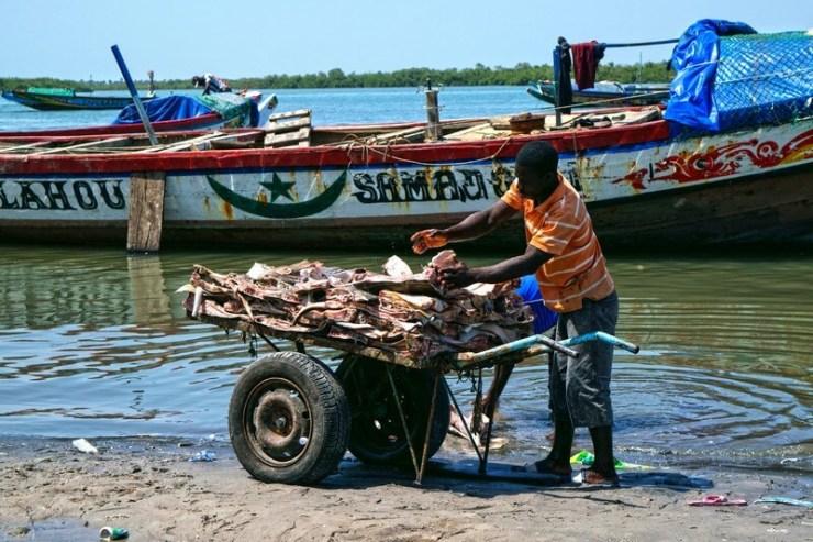 Senegal pescatore