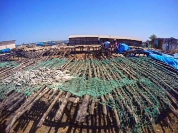 Pescatori Senegal