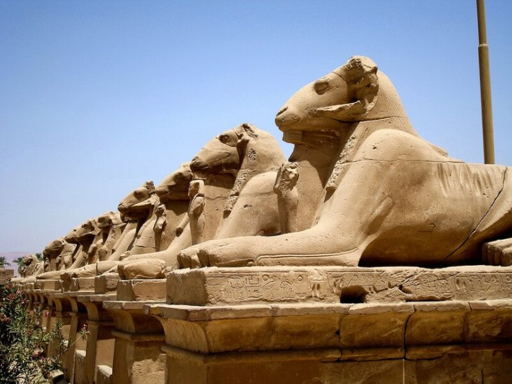Sfingi Karnak