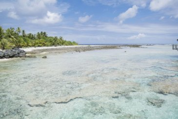 Tikehau Polinesia Francese 5