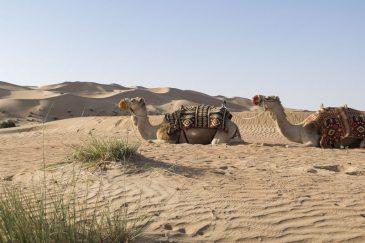 DUBAI_87