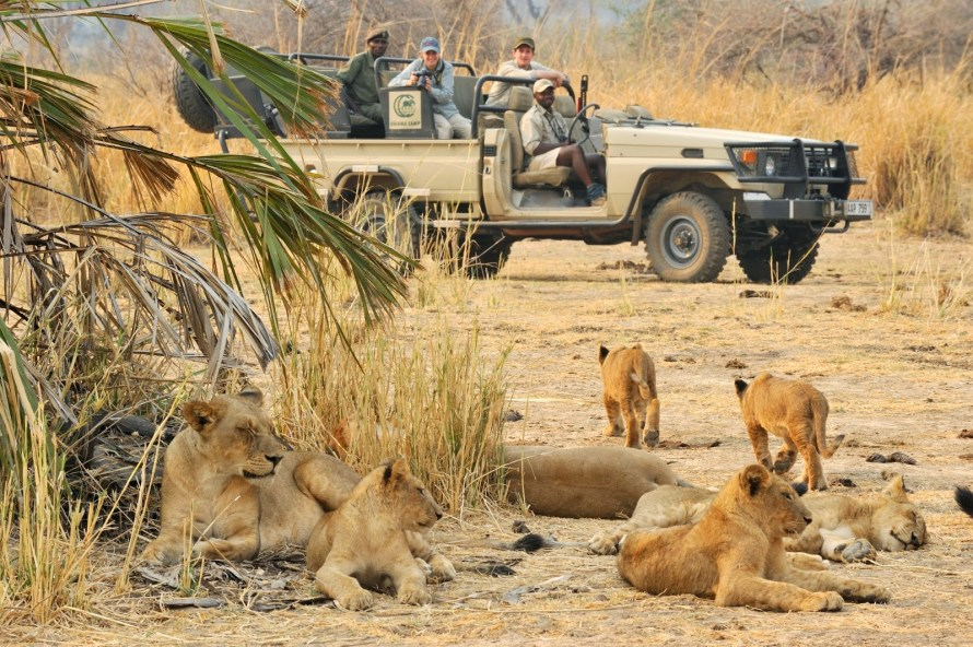 zambia safari Travel Line Uk