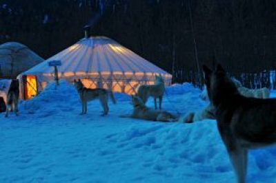 Tambako The Jaguar created the image of a yurt in the snow