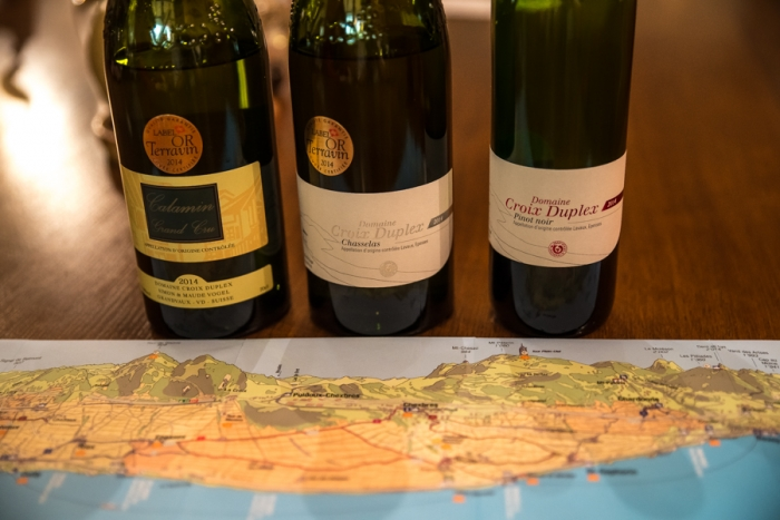 Wines, UNESCO Vineyard, Lavaux, Lake Leman, Lake Geneva, Lausanne, Switzerland