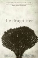 The Drago Tree, The Canary Islands, The Spanish Islands.