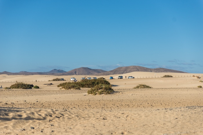 fuerteventura, holiday gems, family holidays, canary islands, correlejo, beaches, markets, sand dunes,