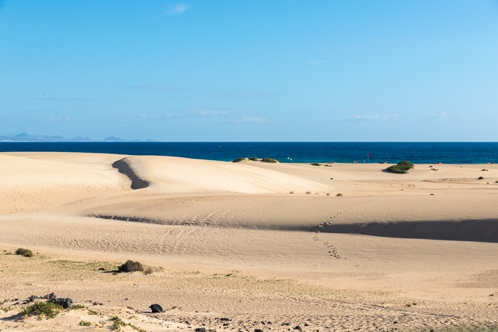 fuerteventura, holiday gems, family holidays, canary islands, correlejo, beaches, markets, sand dunes
