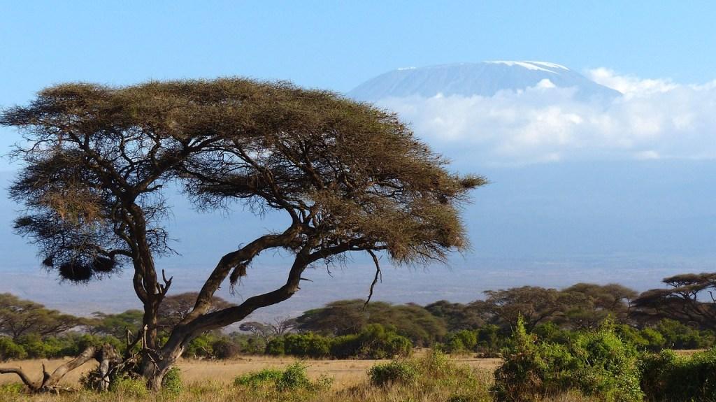 Kilimanjaro, Africa, hiking, mountain, outdoor adventure