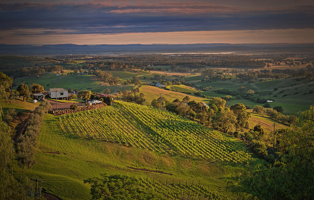 Hunter Valley in New South Wales, Australia