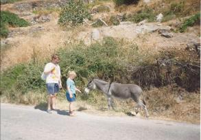 Andros and donkey - Travelling Sylvia -  what my mother did on holiday